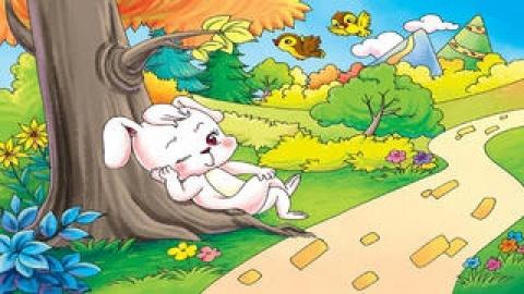 龟兔赛跑-睡前童话ibigtoy-child10.猕猴桃蜜蜂授粉图片